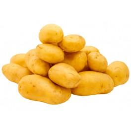 Pommes de terre charlotte en vrac